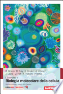 BIOLOGIA MOLECOLARE DELLA CELLULA IV EDIZIONE (L'ESSENZIALE)