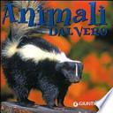 Animali dal vero