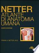 Netter. Atlante di anatomia umana 5a edizione.