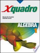 X quadro. Algebra 1.