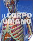 Guarda dentro il corpo umano
