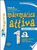 Matematica Attiva 1a+1b+Matematica per il computer