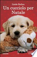 Un cucciolo per Natale (Spedizione compresa)