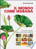 Il mondo come ikebana. Umanesimo scientifico dalla new-age al pan-islamismo