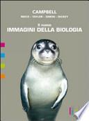 Il nuovo Immagini della biologia C - D