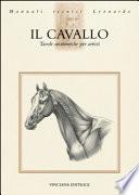 Il cavallo Tavole anatomiche per artisti