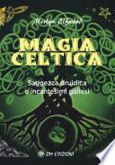 Magia celtica: Saggezza druidica e incantesimi gallesi