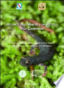atlante degli anfibi e dei rettili della Campania