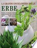 LA GRANDE ENCICLOPEDIA DELLE ERBE Salute, bellezza, cucina: tante ricette per vivere bene con l'aiuto delle piante