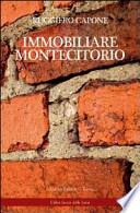IMMOBILIARE MONTECITORIO
