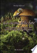 La cucina delle fate Ricette vegetariane gustose, facili e veloci dal mondo magico degli Spiriti di Natura