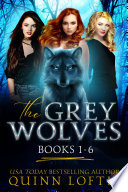The Grey Wolves Series Books 1-6 image