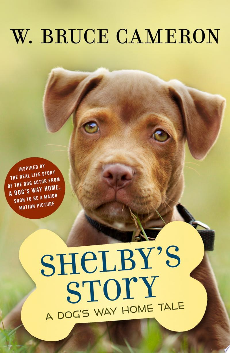 Shelby's Story banner backdrop