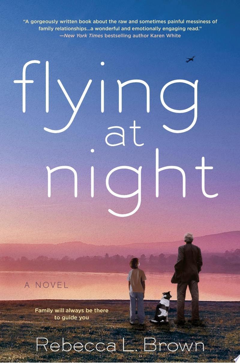 Flying at Night banner backdrop