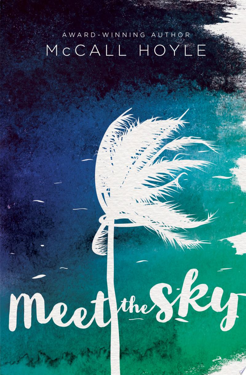 Meet the Sky banner backdrop