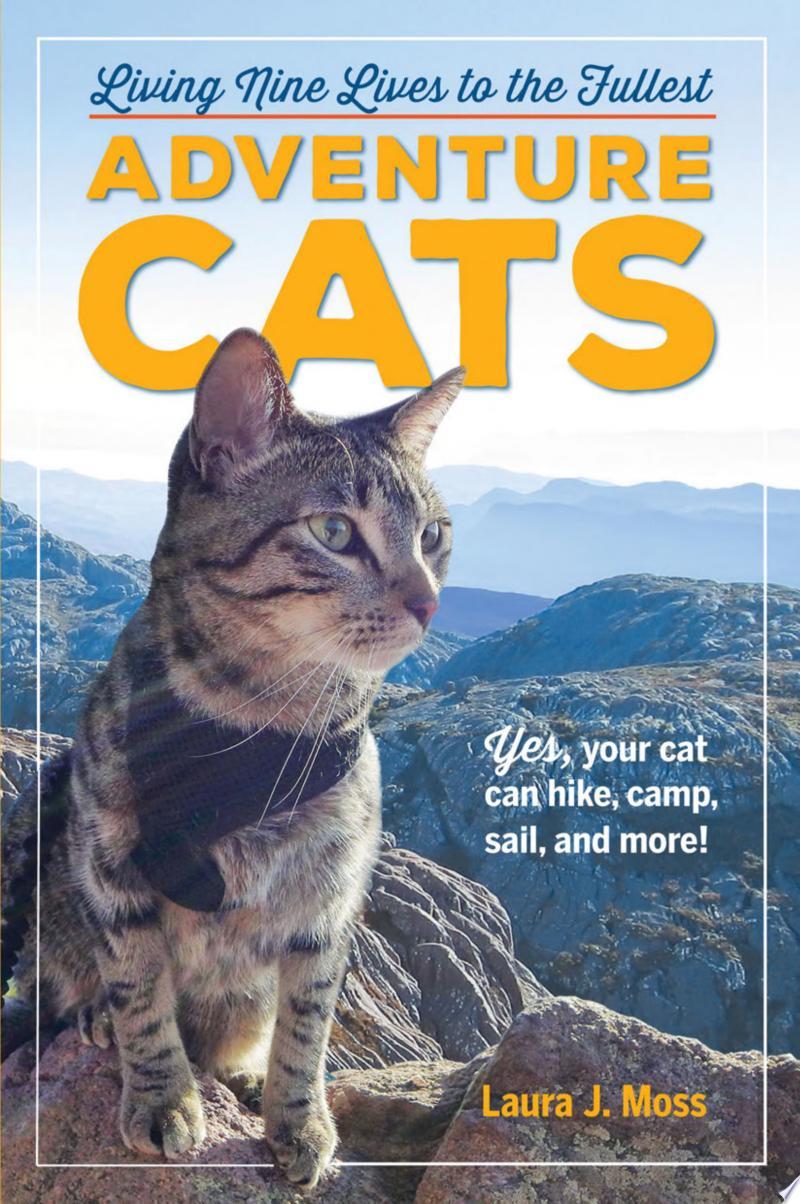Adventure Cats banner backdrop