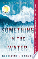 Something in the Water image
