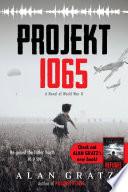 Projekt 1065 image