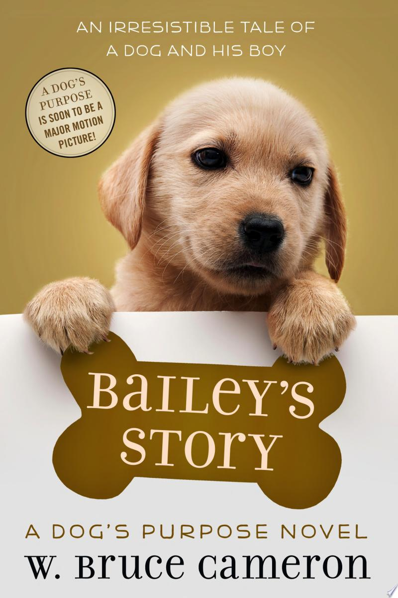 Bailey's Story banner backdrop