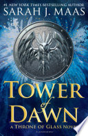 Tower of Dawn image