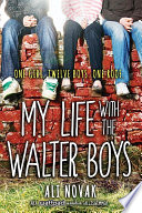 My Life with the Walter Boys image