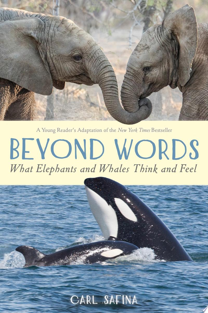 Beyond Words: What Elephants and Whales Think and Feel banner backdrop