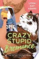 Crazy Stupid Bromance image
