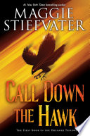 Call Down the Hawk, (The Dreamer Trilogy, Book 1) image