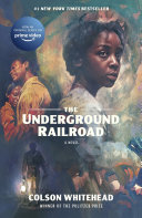 The Underground Railroad image