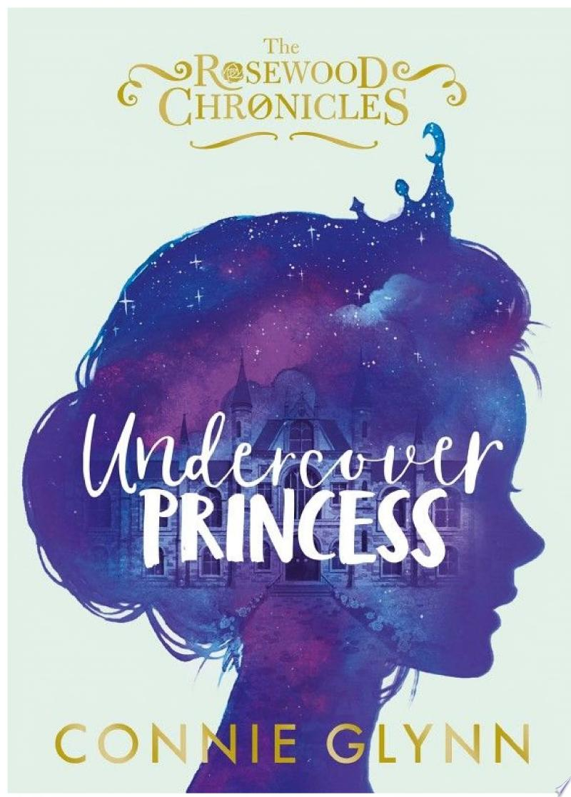 Undercover Princess banner backdrop