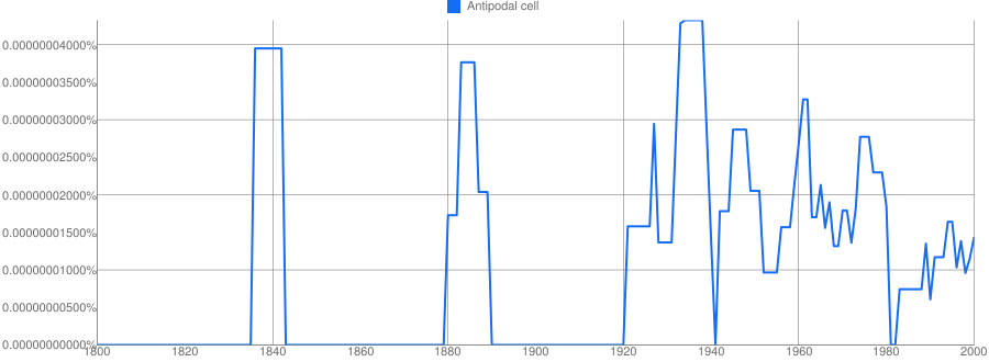 Antipodal cell meaning in hindi   Antipodal cell ka matlab
